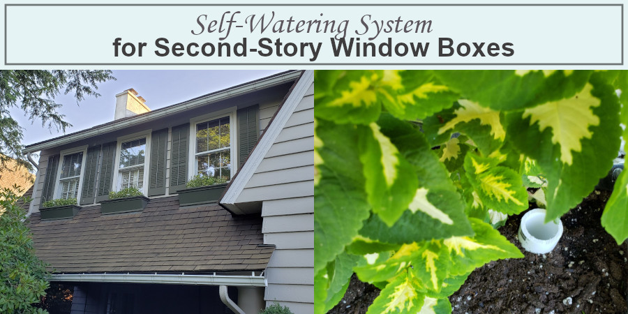self-watering system for window boxes